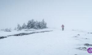 Masyw Śnieżnika – mini bikepacking