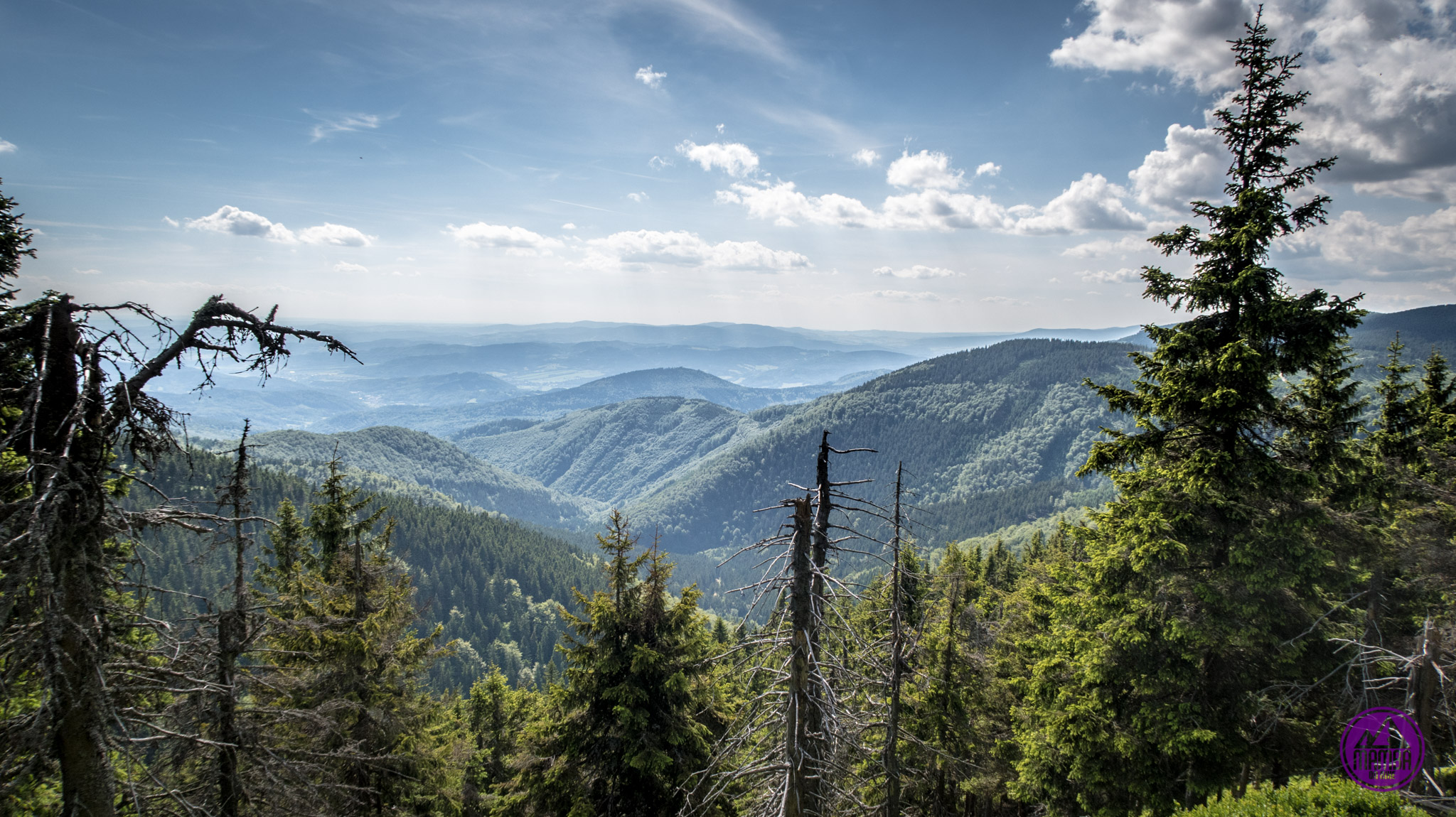 Widok na góry.